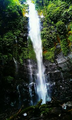 Curug Benowo, Semarang, Central Java, Indonesia|http://www.nusatrip.com/id/tiket-pesawat/ke/semarang_SRG #nusatrip #travel #travelingideas #holiday #semarang #Indonesia #onlinetravelagency #waterfall #centaljava #java