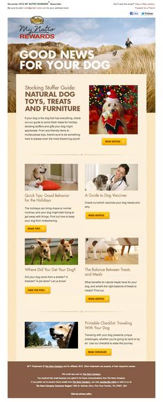 Nutro » Beautiful Email Newsletters