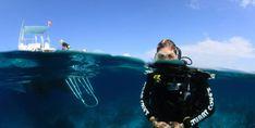 Surface Survival While Scuba Diving Everything on scuba diving: http://divingtales.com