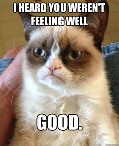 I heard you weren't feeling well....