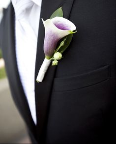picasso calla lily boutonniere for the groom, wrapped in green with a twist.