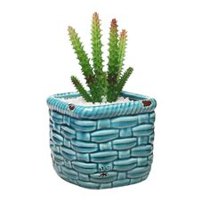 Brighten up any space with this colorful mini plant pot. #turquoise #homedecor #readyforspring https://www.mygift.com/turquoise-rustic-ceramic-basket-woven-pottery-style-succulent-planter-holder.html