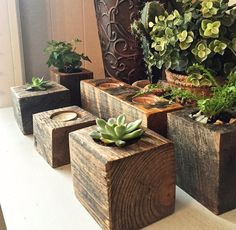 Succulent Planter, reclaimed wood succulent planter, candle holder, planter by ChicagoLights on Etsy