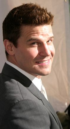 David Boreanaz known as FBI Special Agent Seeley Booth. Booth And Bones, Booth And Brennan, Buffy The Vampire Slayer, Pretty Men, Beautiful Men, Animals Beautiful, Hot Actors, Actors & Actresses, Seeley Booth