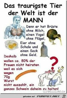 Satire, Funny Note, German Quotes, Funny Phrases, Man Humor, Quotations, Comedy, Funny Pictures, Funny Pics