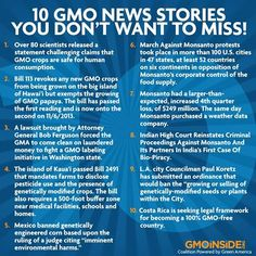 10 GMO News Stories You Don't Want To Miss! Read here: http://ecowatch.com/2013/10/21/scientists-say-no-consensus-on-gmo-food-safety
