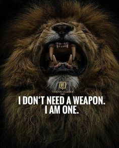 67 Top Quotes Inspirational for Success That will Inspire You Extremely 1 Leo Quotes, Wolf Quotes, Attitude Quotes, Wisdom Quotes, True Quotes, Qoutes, Lioness Quotes, Short Inspirational Quotes, Great Quotes