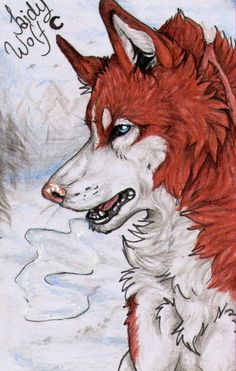 ACEO #30: Cold days by SaidyWolf on DeviantArt
