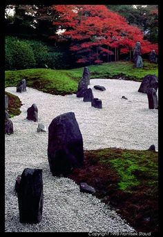 Rock garden in Tofuku-ji, Kyoto  http://phototravels.net/japan/pcd3860/rock-garden-tofukuji-1.html#