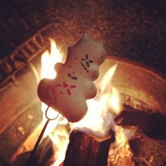 Campfire toasted peeps over Green Light Fire Bag. Chemical free, instant light, real wood campfire.