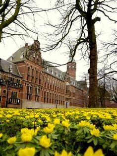 Groningen - Provinciehuis