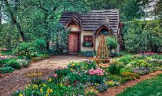 house, garden, flowers