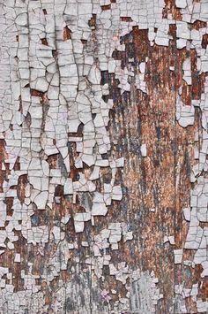 1016 Printed Background - White Birch Wood Floor
