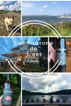 Les Cantons de L'Est, Québec Voss Bottle, Water Bottle, Canton, Logs, Water Flask, Water Bottles, Magazines