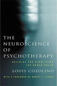 The Neuroscience of Psychotherapy  https://www.pdresources.org/course/index/1/1128/The-Neuroscience-of-Psychotherapy