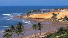 Resultado de imagem para praias do ceara cumbuco