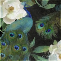 Peacock and Magnolia II Print by Mindy Sommers