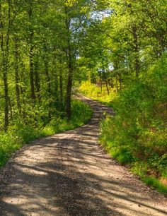 Country road (Olofstorp, Vastra Gotaland, Sweden) by Johann Klovsjö