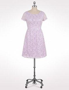 Plus Size Sequined Lace Dress | Dressbarn