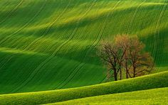 # 33 of 83 - Rolling Hills, Czech Republic. The rolling hills of the Czech Republic look like fabric.