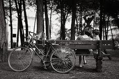 Italia terapia: Addio all'estate (per quest'anno). In pineta a Pinarella di Cervia