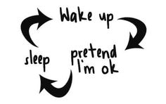 The daily cycle...