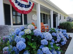 Wellfleet summer vacation rental home in Cape Cod. Wellfleet Harbor Luxury Beachfront Home Cape Cod Rentals, Cape Cod Vacation Rentals, Blue Hydrangea, Hydrangeas, Coastal Gardens, Home Decor Styles, Coastal Living, Daffodils, Colorful Flowers