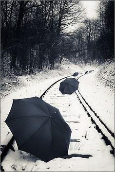Rail  Christopher Auer    i would love to do this, and have one bright colored umbrella with a model under it! :) i need my camera back so bad!!!!!! oh gosh do i ever need my camera! this would make great engagement pics!