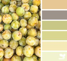 { fresh hues } image via: The post Fresh Hues appeared first on Design Seeds. Colour Pallette, Colour Schemes, Color Combos, Color Harmony, Color Balance, Design Seeds, Color Palette Challenge, Color Stories, Color Swatches