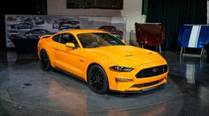 Image result for mustang