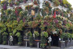 Londra in fiore