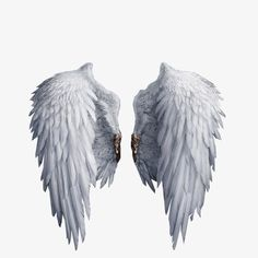 wing,feather,angel,element wings,fly,element,wings,wing clipart Blur Image Background, Desktop Background Pictures, Background Design Vector, Photo Background Images, Picsart Background, Angel Wings Art, Angel Wings Drawing, Wings Png, Angel Wallpaper