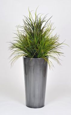 Artificial Ornamental Beach Grass in Round Zinc Planter, Brushed Steel $149.99