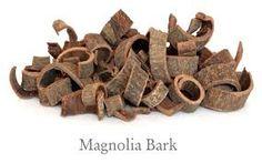 Hou Po (Magnolia bark)