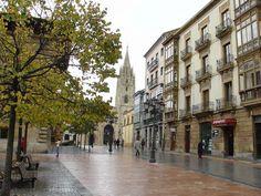 Oviedo es una ciudad y capital del Principado de Asturias, España.