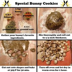 Baking time for bunny parents! You can replace the banana and/or pumpkin for your bunny's favorite veggie or fruit puree. If your bunny is watching his or her figure, omit the honey. Enjoy, little bunnies!                                                                                                                                                                                 More