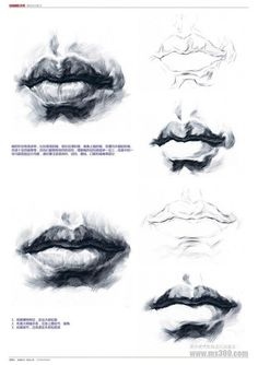 Step by step tutorial to draw faciale features like lips. Traditional art tutorial for drawing and painting Drawing Studies, Drawing Skills, Drawing Techniques, Life Drawing, Figure Drawing, Painting & Drawing, Drawing Faces, Anatomy Sketches, Anatomy Drawing