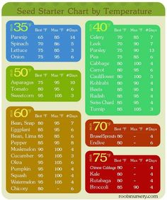 Seed Starter Chart for vegetable garden