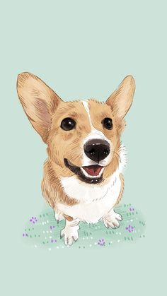 Dogs Wallpaper cute puppy dog pet #iphone #6 #plus #wallpaper | iphone 6