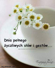 Good Morning, Humor, Photos, Good Morning Funny, Polish Sayings, Kunst, Good Day, Buen Dia, Humour