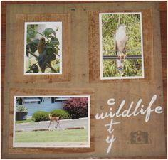 Think Crafts - City WildLife Scrapbook Page