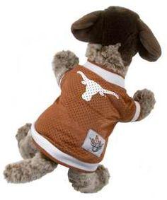 Longhorn Pet Jersey  #cute #puppy #kitten #hookem