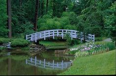 Duke Gardens