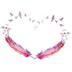 LOVE bird feather ART PRINT 13X19 original watercolor painting... ($45) ❤ liked on Polyvore