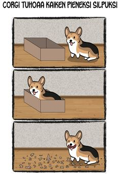 Well - you said it was my box!!