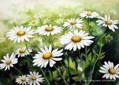 Wild Flower Meadow, Wild Flowers, Watercolor Flowers, Watercolor Paintings, Flower Art, Daisy, Awesome, Plants, Mural Ideas