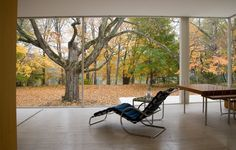 Modernism at the Movies: The Design Drama Behind the Famous Farnsworth House
