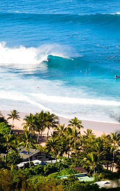 Pipe from above. 2014 Billabong Pipe Masters: Dec. 8 - 20 Photo | aspworldtour
