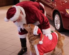 Santa Claus had his favorite dog, Summer, with him