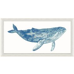 Watercolor Blue Whale Print Paintings ($289) ❤ liked on Polyvore featuring home, home decor, wall art, ink painting, blue home decor, blue painting, water colour painting and whale home decor